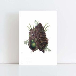 Print of 'Bark and Moss' No Frame