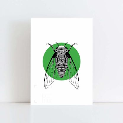 Original Illustration of a Cicada with Green Background No Frame
