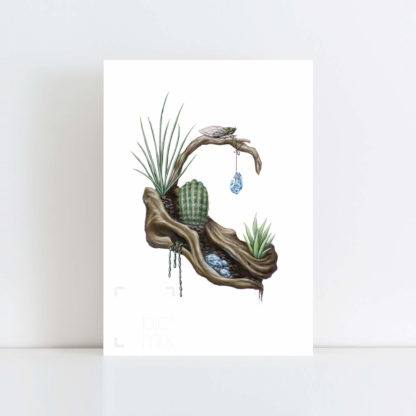 Print of 'Cicada on Cactus' No Frame