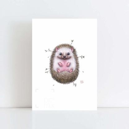 Print of 'Little Hedgehog' No Frame