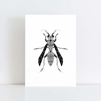 Original Illustration of a Wasp with a white background No Frame