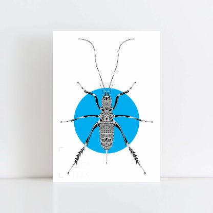 Original Illustration of a Weta with a blue background No Frame