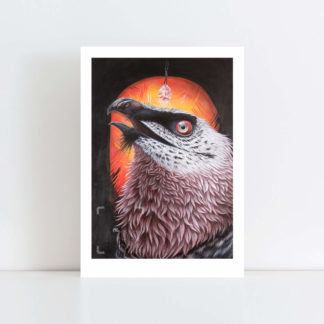 Print of 'Bearded Vulture' No Frame