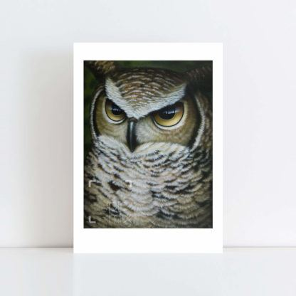 Print of Great Owl No Frame
