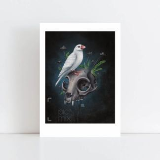 Print of Little Finch No Frame