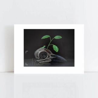 Print of Little Growth No Frame