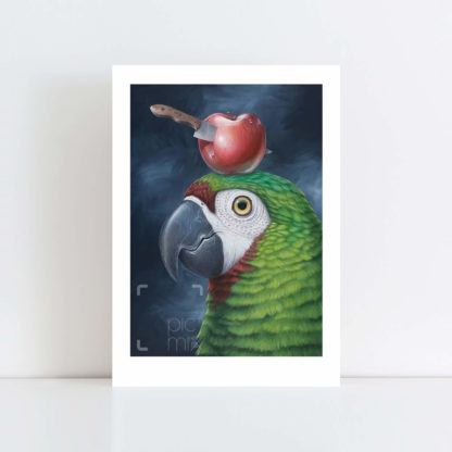 Print of 'Near Miss' parrot and apple No Frame