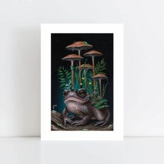 Print of Toad and Mushrooms No Frame